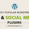 Most Popular WordPress SEO and Social Media Plugins